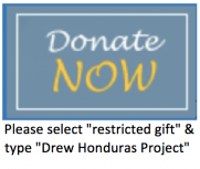 "Please select ""restricted gift"" & type ""Drew Honduras Project"""